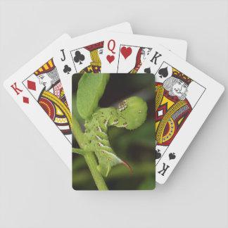 Jeu De Cartes Cartes de jeu de Hornworm Caterpillar de tabac