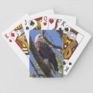 Jeu De Cartes Cartes de jeu d'Eagle chauve