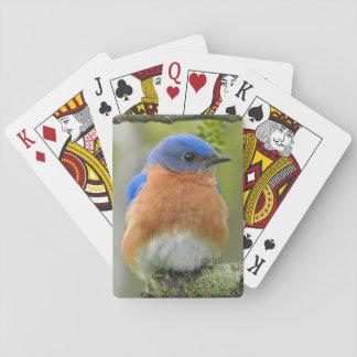 Jeu De Cartes Cartes de jeu d'oiseau bleu