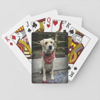 Jeu De Cartes Cartes de jeu jaunes de photo de chien de