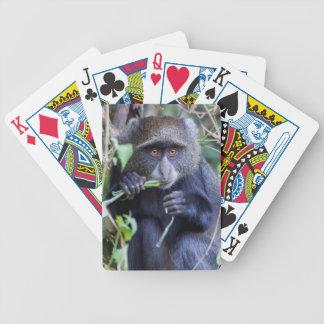 Jeu De Cartes Consommation bleue de singe