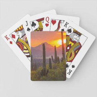 Jeu De Cartes Coucher du soleil de cactus de désert, Arizona