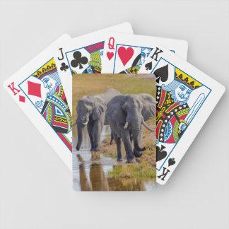 Jeu De Cartes Éléphants à un point d'eau