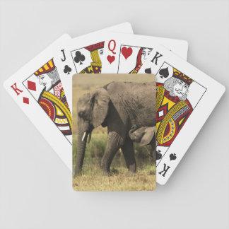 Jeu De Cartes Éléphants africains