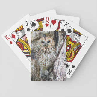 Jeu De Cartes Hibou de cartes de jeu de hibou dans le camouflage