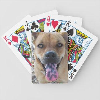 Jeu De Cartes langue 804a repérée par chien heureux