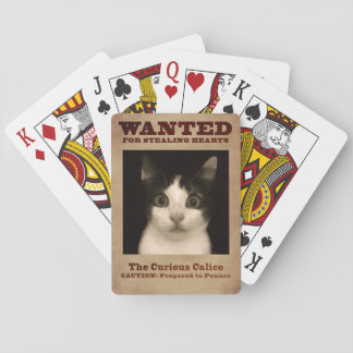 Jeu De Cartes Le chaton curieux de calicot