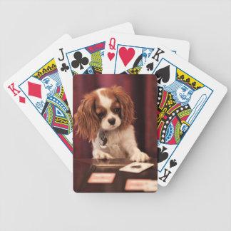 Jeu De Cartes Le chiot joue aux cartes