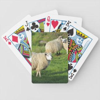 Jeu De Cartes Moutons irlandais