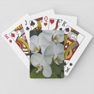 Jeu De Cartes Orchidées blanches de Phalaenopsis florales