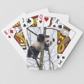 Jeu De Cartes Panda de bébé dans l'arbre