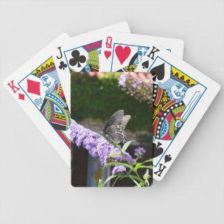 Jeu De Cartes Papillon sur une fleur