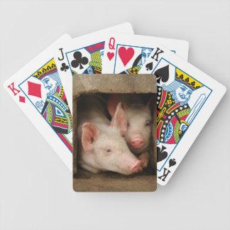 Jeu De Cartes Porcelets curieux