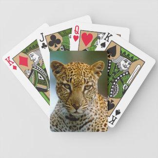 Jeu De Cartes Portrait de léopard