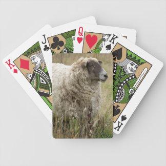 Jeu De Cartes Portrait de moutons