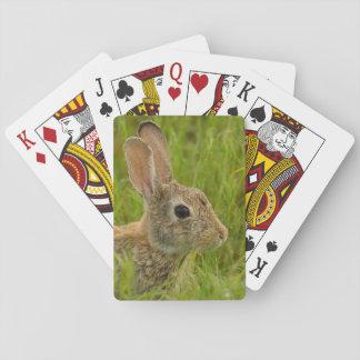 Jeu De Cartes Portrait d'un lapin de lapin