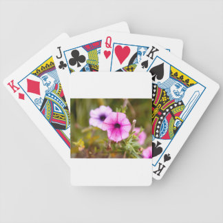 Jeu De Cartes sweet flowers