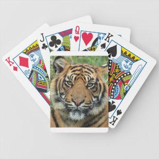Jeu De Cartes Tigre adulte