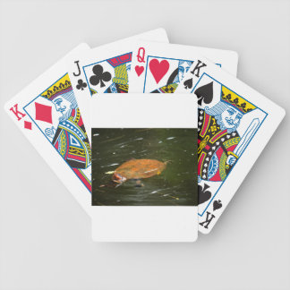 JEU DE CARTES TORTUE QUEENSLAND RURAL AUSTRALIE