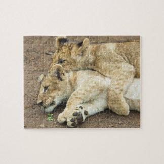 Jeu de deux petits animaux de lions puzzle