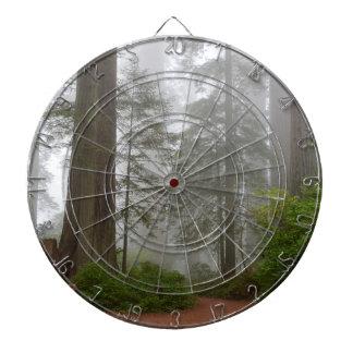 Jeu De Fléchettes Brouillard de parc national de séquoia