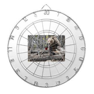 Jeu De Fléchettes Ours gris en parc national Etats-Unis de