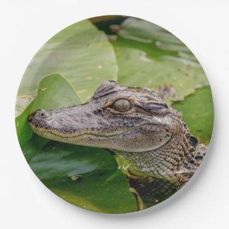 Jeune alligator assiettes en papier