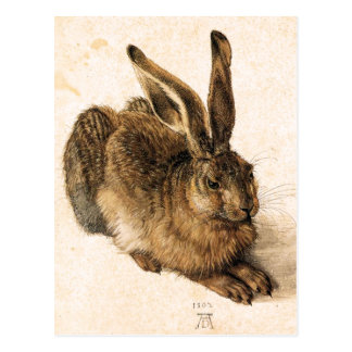 Jeune carte postale de lièvres d'Albrecht Durer