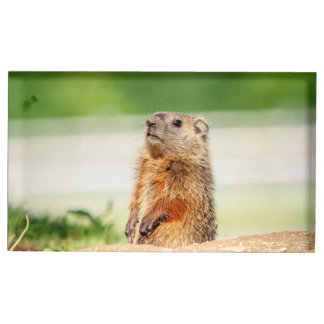 Jeune Groundhog Porte-cartes De Placement