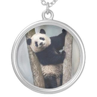 Jeune panda grimpant à un arbre, Chine Pendentif Rond