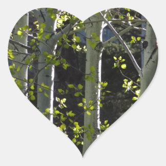 Jeunes arbres d'Aspen Sticker Cœur