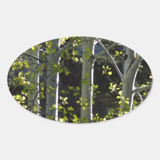 Jeunes arbres d'Aspen Sticker Ovale