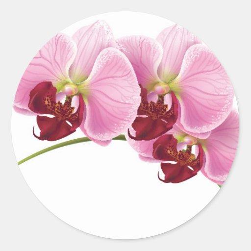 Joint d'enveloppe de mariage d'orchidée de 20 autocollants ronds
