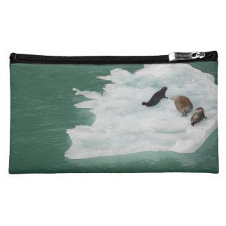 Joints sur un sac d'iceberg