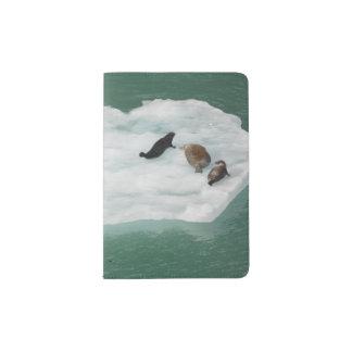 Joints sur un support de passeport d'iceberg protège-passeport