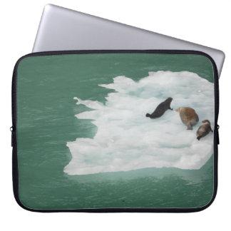 Joints sur une douille d'ordinateur portable housse ordinateur portable