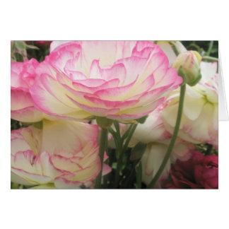 Joli et rose carte de vœux