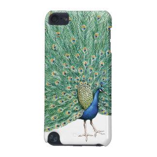 Joli paon coque iPod touch 5G
