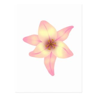 Jolie fleur de lis carte postale