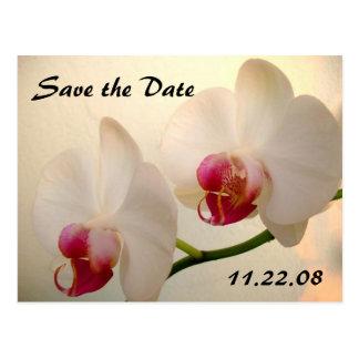 jolie orchidée carte postale