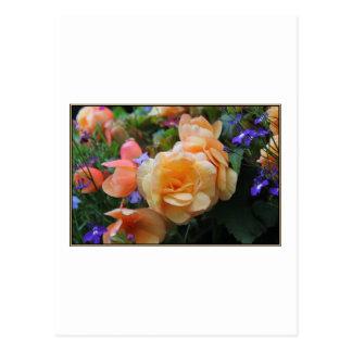 Jolies fleurs cartes postales