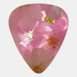 Jolies fleurs de cerise onglet de guitare