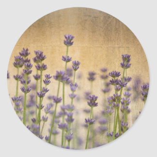 Jolies fleurs de lavande sticker rond