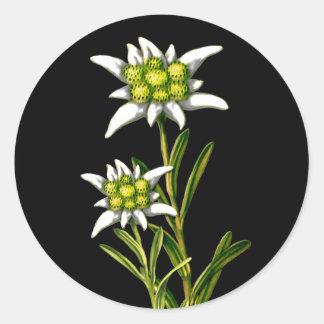 Jolis autocollants d'edelweiss