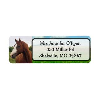 Jolis étiquettes de adresse de retour de cheval
