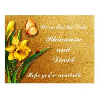 Jonquilles d'or carte postale