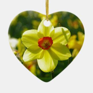 Jonquilles jaune-orange 02.1g ornement cœur en céramique