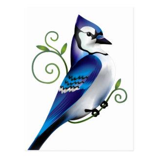 Jour de geai bleu carte postale