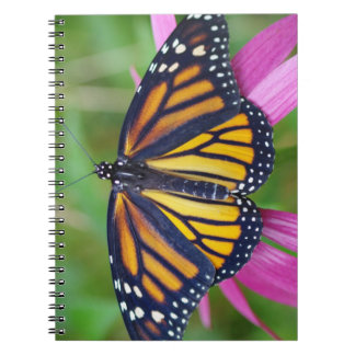 Journal de papillon de monarque