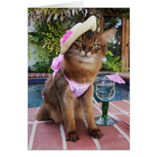 Jours d'été comportant l'été le chat cartes